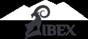 IBEX_logo ロゴ